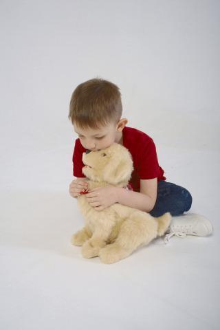Companion Dog - Joy for All