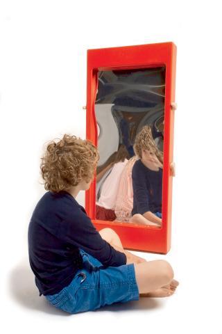 Distortion Mirror