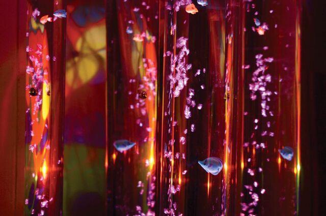 """Aquarium Bubble Tube - Height 70"""""""