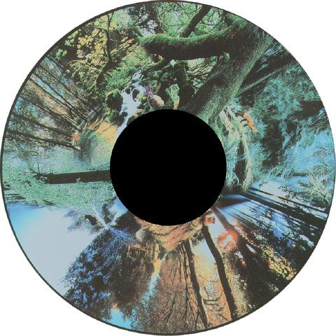 Solar Projector Effects Wheels- Style: Seasoned Woods Effects Wheel
