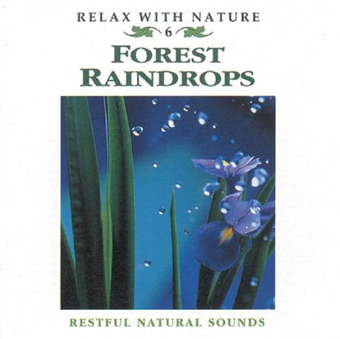 Forest Raindrops CD