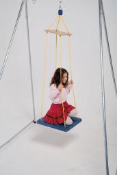 Swing, Platform Options