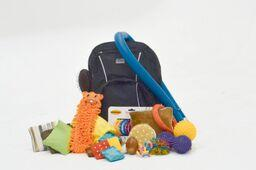 Tactile Backpack