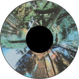 Solar Projector Effects Wheels- Style: Seasoned Woods Effects Wheel